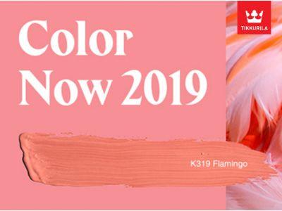 Трендовые цвета Tikkurila 2019